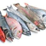 Aliments pour agrandir le pénis le poisson